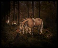 Serene Forest by Velaija