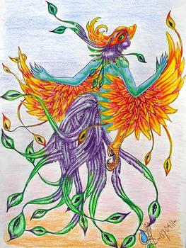 Bird-dance