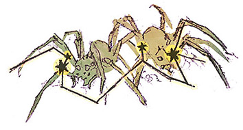 Asterism: The Balorian Spiders