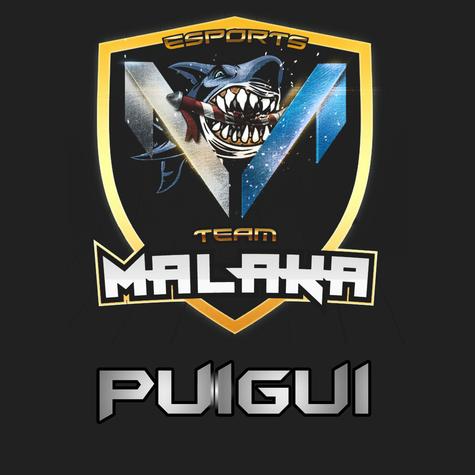 Puigui Team Malaka Avatar by Mosbryk