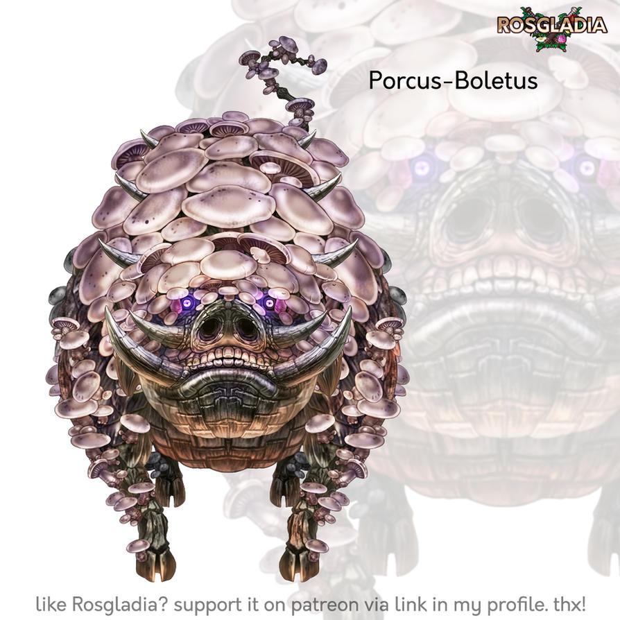 Rosgladia: Porcus-Boletus by Wen-M