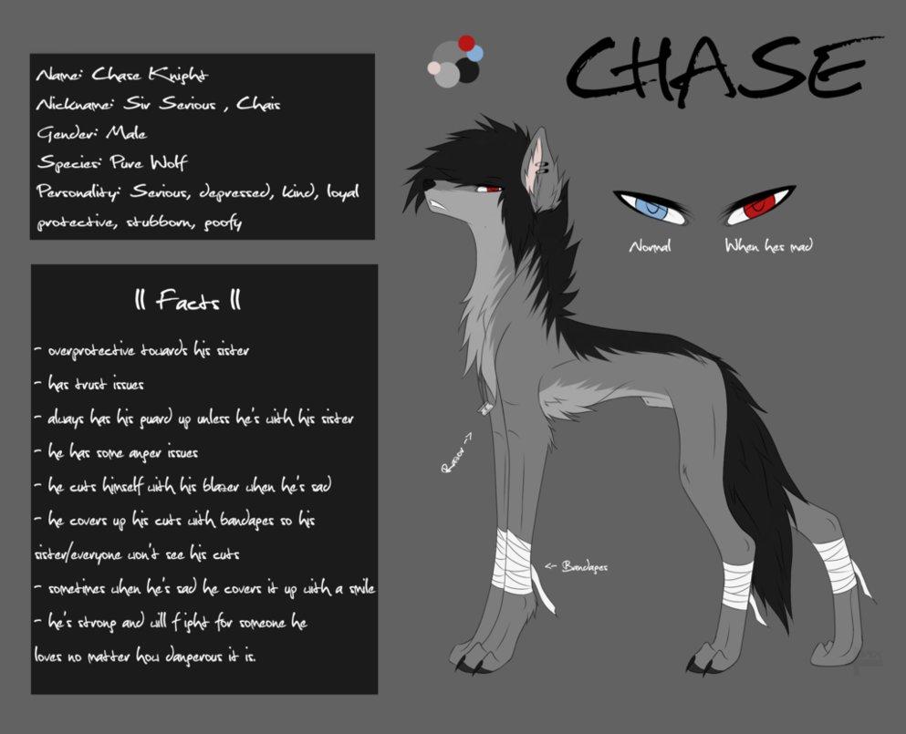 CHASE by SeleneWolf25