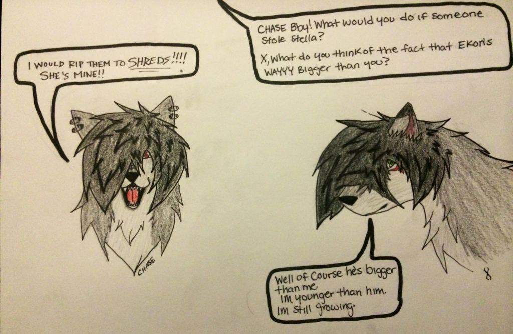 Q and A for Chase/X by SeleneWolf25