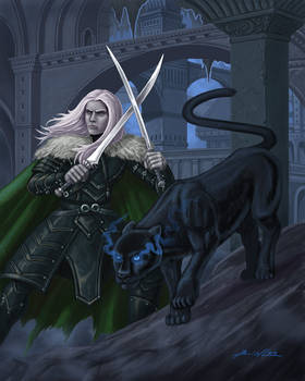 Drizzt Do'Urden by Taman88