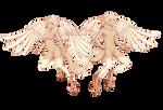 Harpies || BC Pets for Zaiyon