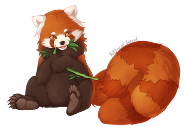 Twin-Tailed Panda
