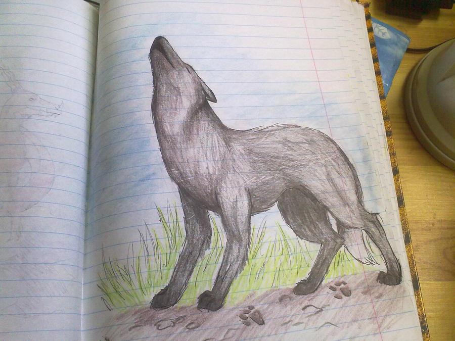 Howling Wolf by Bawaria