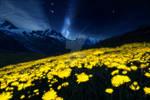 Night Alien Landscape by eddyrailgun