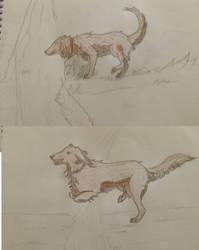 Dogs by kiki666999