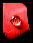 Red Feather.....