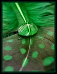 Green Supreme.... by Pjharps
