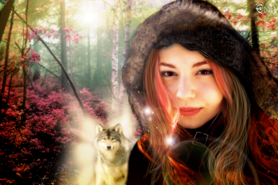 Mystic Woods by Branawen