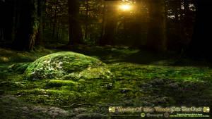 The Sacred Grove Premade Background