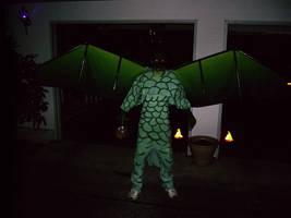 Dragon Costume by Rarrum