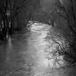 Floodland by GawrilaGhul