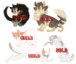 Cat adopts (SOLD OUT)
