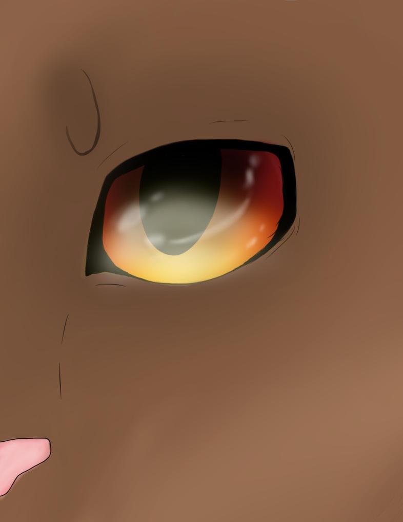 Cats Eye|EmberPool| by xXEmberPoolXx