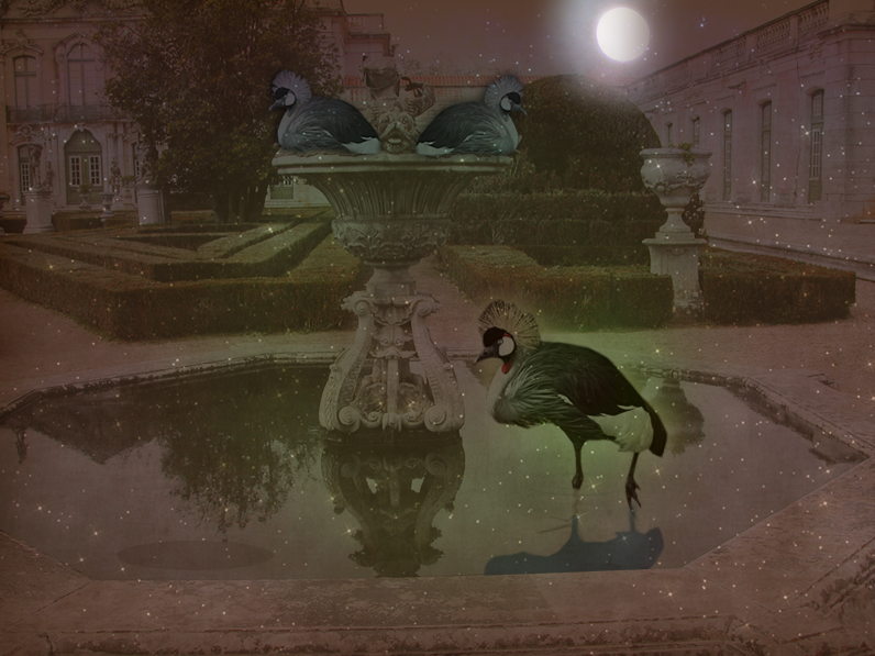 Nighttime at Fountain Grou by 3punkins