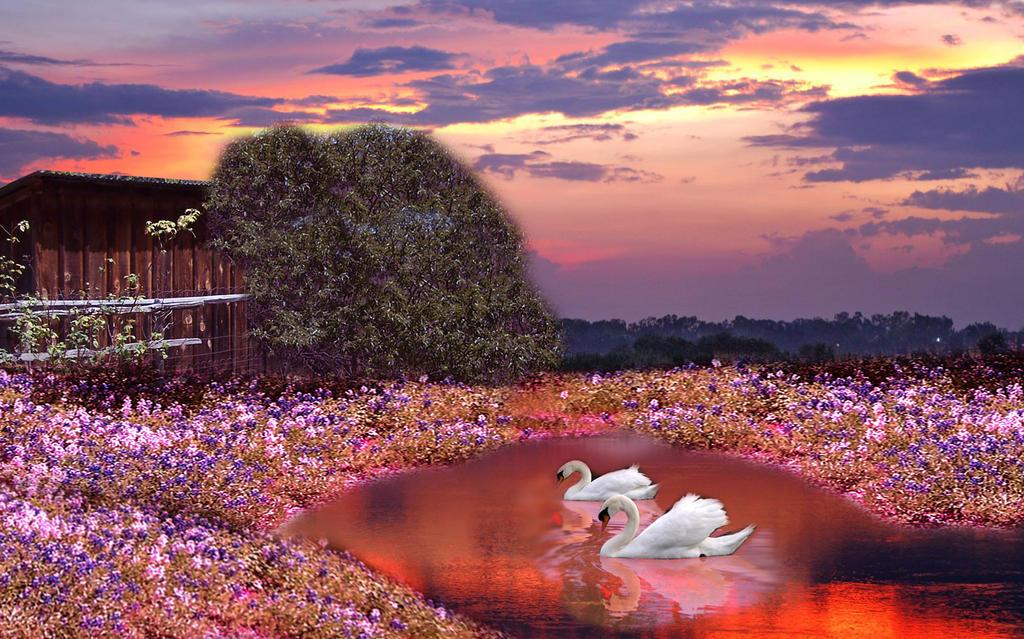 Swan Lake by 3punkins