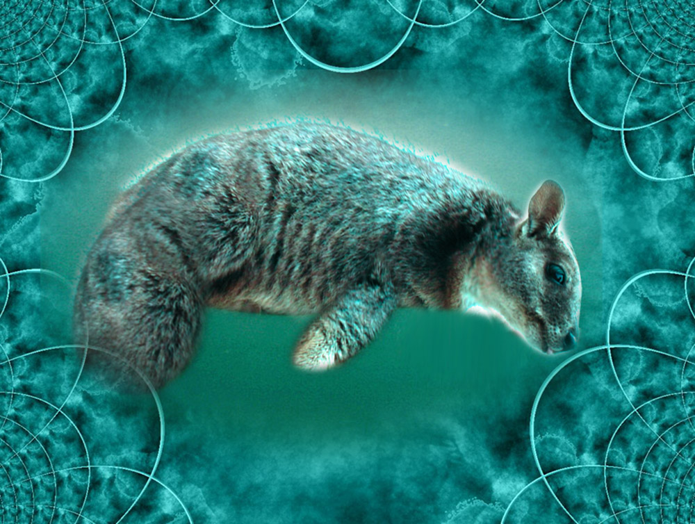 The Wallatee (Wallaby ~ Manatee) by 3punkins