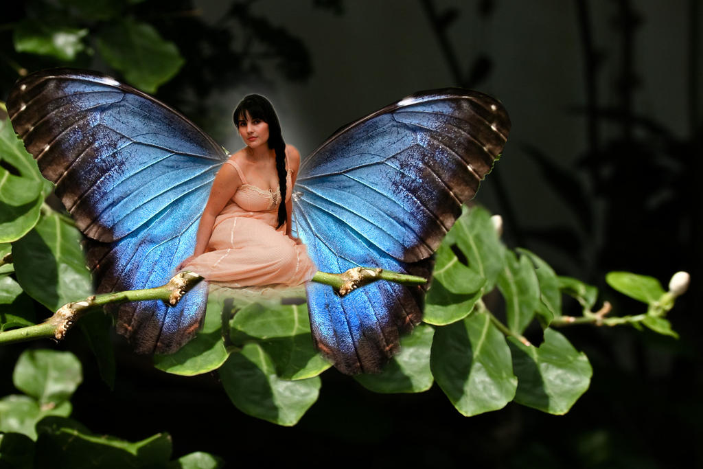 Lady Butterfly by 3punkins
