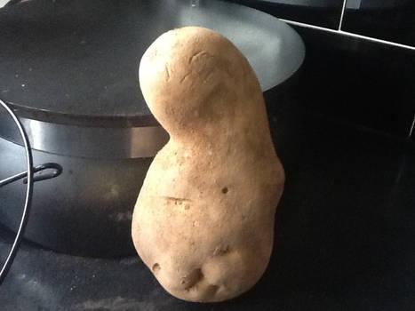 Umm.... Potato?