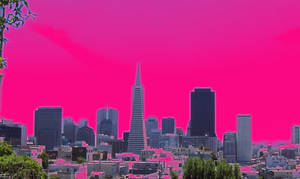 Fuchsia San Fran by infin8yquest