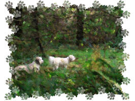 2 in the Woods pawprints by infin8yquest
