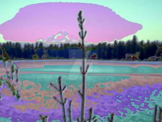Lake Morton Shore 2