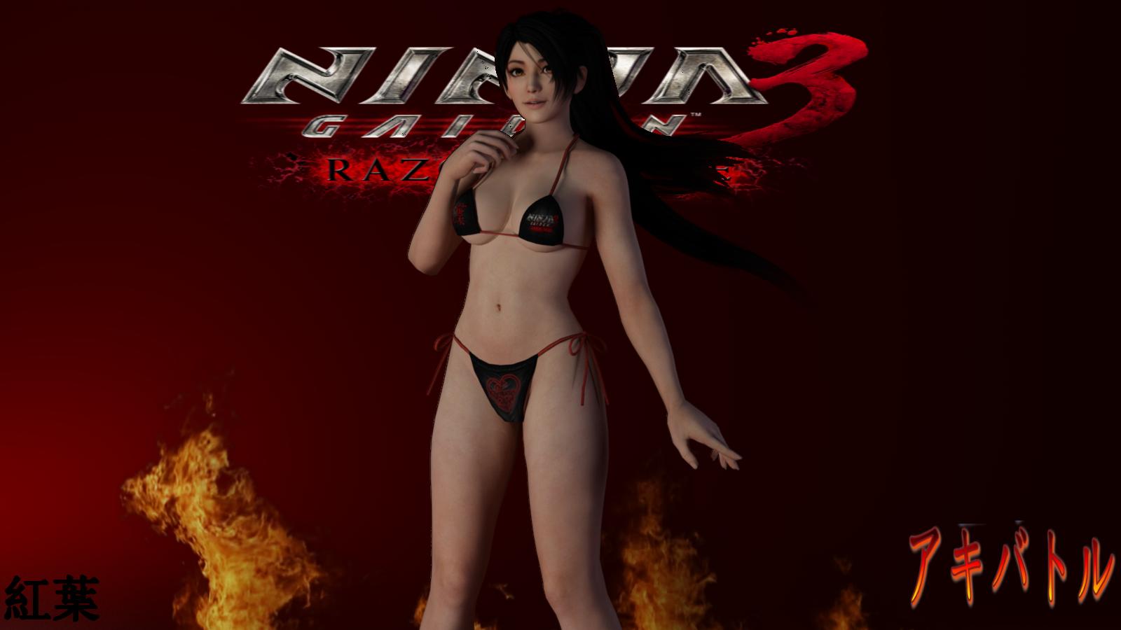 Ninja Gaiden Naked 83