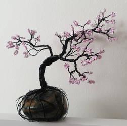Sakura (2) by Kurai-no-Manazashi