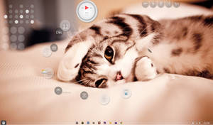 Cat theme desktop