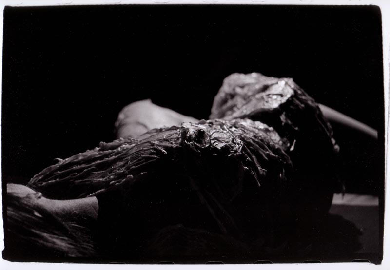 doris nude II by damienhirst12