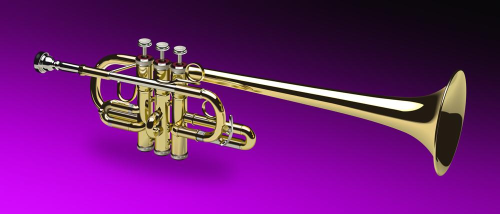 Trumpet by shko