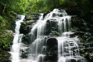 Sylvia Falls by cobaltsennheiser