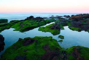 Northern Beaches Evenings by cobaltsennheiser