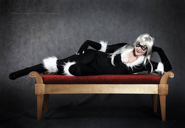 Black cat 1 by MayWolf23