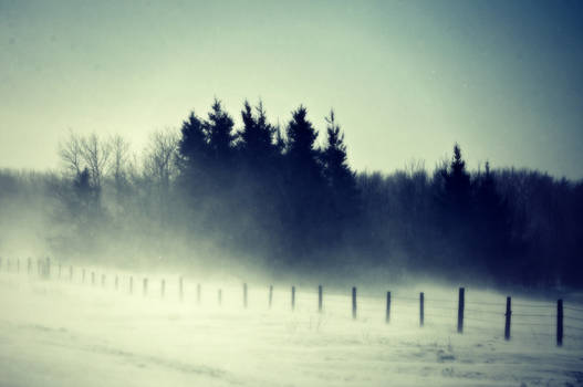 blizzard on the prairie