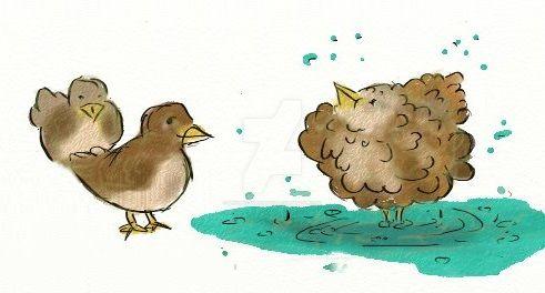 Bird bath by MindPictureBody