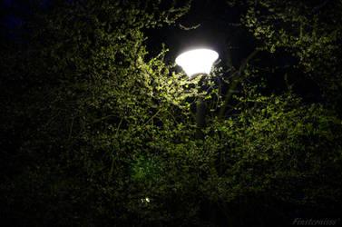 Week 16 - light in the dark by Finsternisss