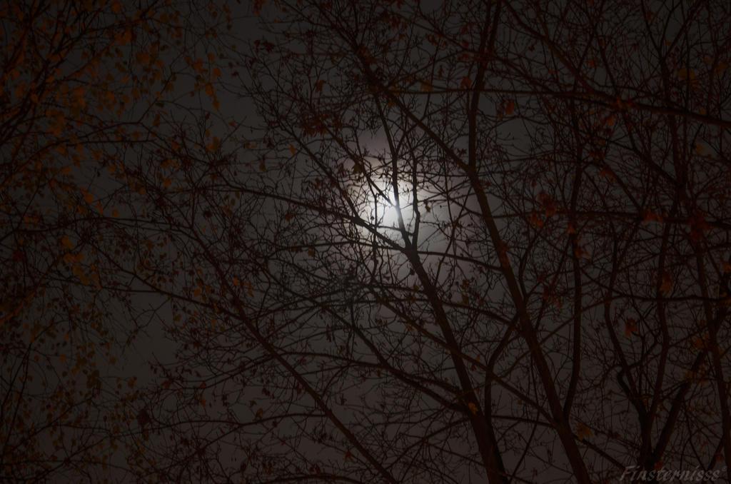 Week 45 - dark sky by Finsternisss