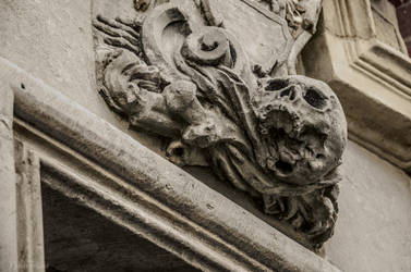 The skull by Finsternisss