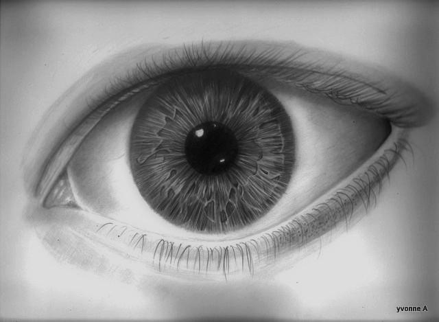 Eye study W I P 2 by yvonne29