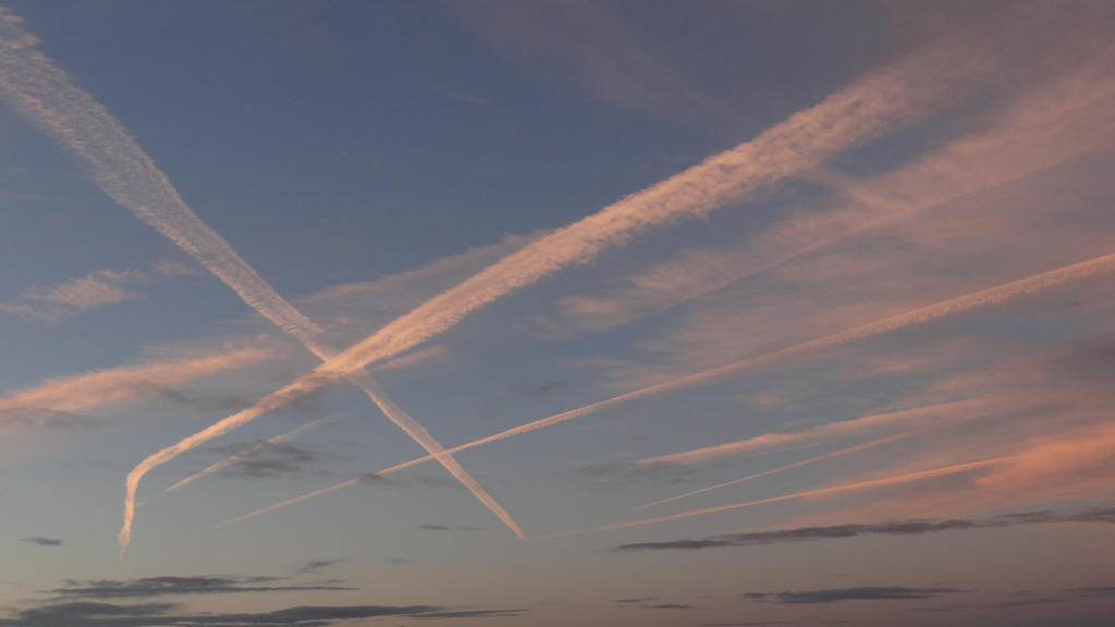 Skycross by FreedomSoja