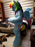 MLP Rainbow Dash Fursuits