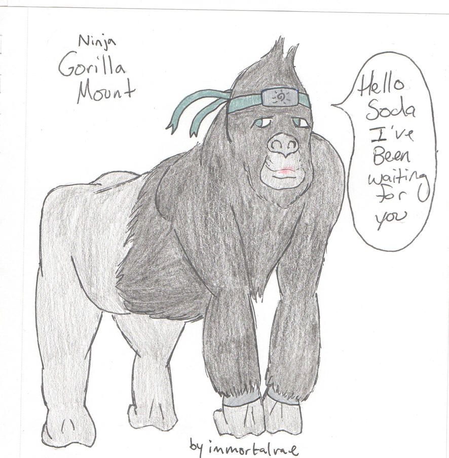 gorilla_mount_by_immortalrae-d9hrihu.jpg