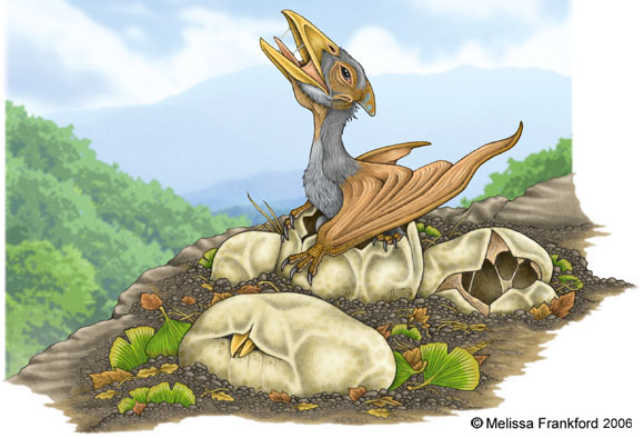 Pterosaur_Hatchling_by_mmfrankford.jpg