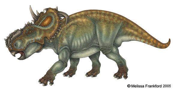 Pachyrhinosaurus by mmfrankford