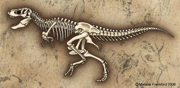 Tyrannosaurus Skeletonbymmfrankford