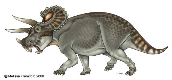 Triceratops Concept by mmfrankford